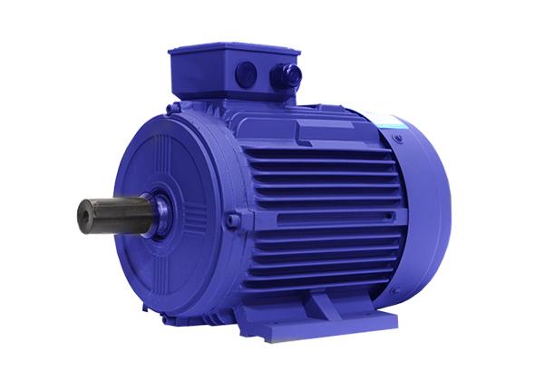 YE2系列低压铸铁高效三相异步感应电动机