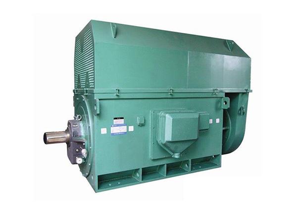 Y系列高压三相异步鼠笼式电动机